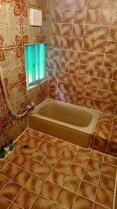 一風変わったムーディーな浴室